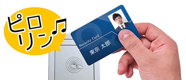 Idcard_melody.jpg